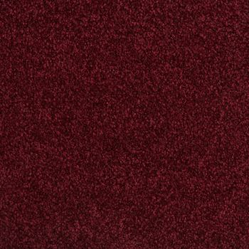 Fundamental Plush Carpet Spiced Berry Color