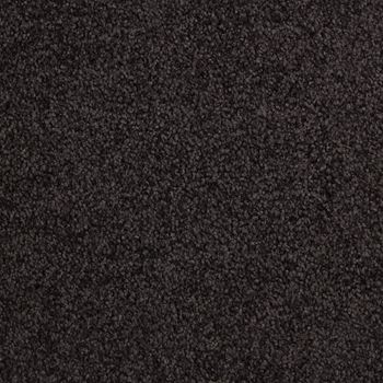 Fundamental Plush Carpet Black Carbon Color