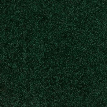 Lustrous Plush Carpet Enchanted Meadow Color