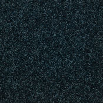 Lustrous Plush Carpet Very Navy Color