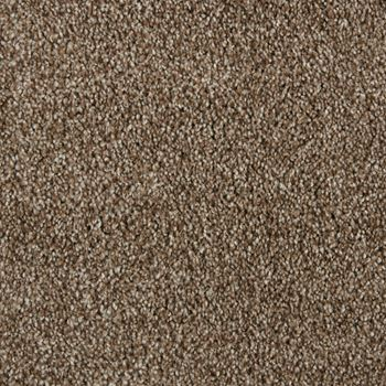 Spotlight Plush Carpet Curtain Call Color