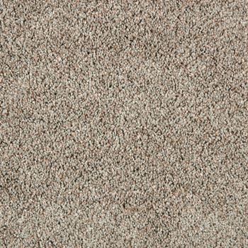 Spotlight Plush Carpet Center Stage Color