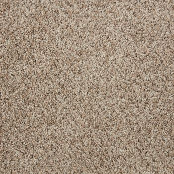 Spotlight Plush Carpet Fame Color