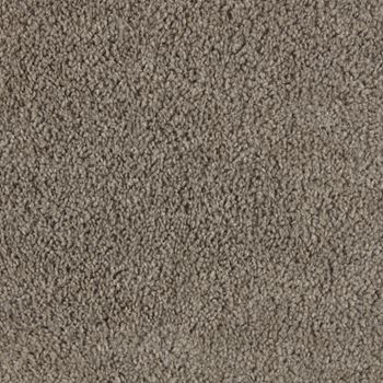 Winhaven Plush Carpet Impulse Color