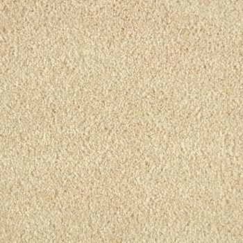 Allure Plush Carpet Charisma Color