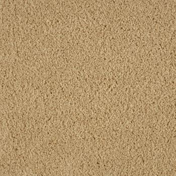 Allure Plush Carpet Captivate Color