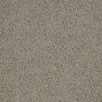 Allure Plush Carpet Attraction Color