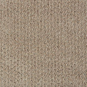 Polaris Pattern Carpet Little Dipper Color