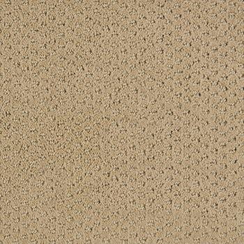 Polaris Pattern Carpet Moon Color