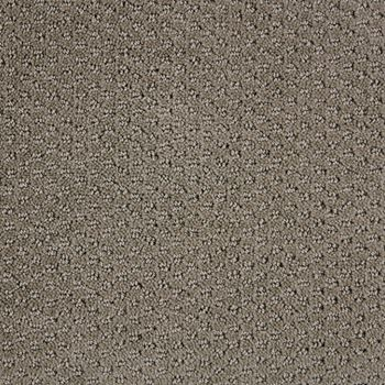 Polaris Pattern Carpet North Star Color