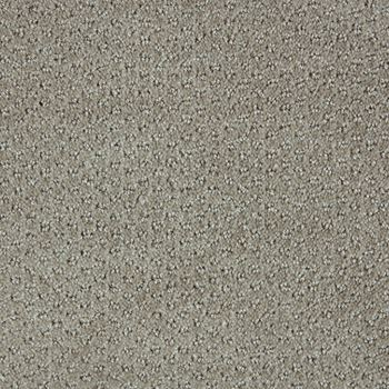 Polaris Pattern Carpet Stellar Color
