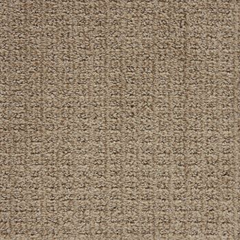 Exceptional Pattern Carpet Outstanding Color