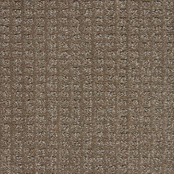 Exceptional Pattern Carpet Phenomenal Color